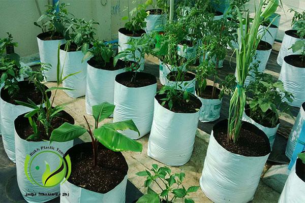 grow-bags-rokhplastic-company