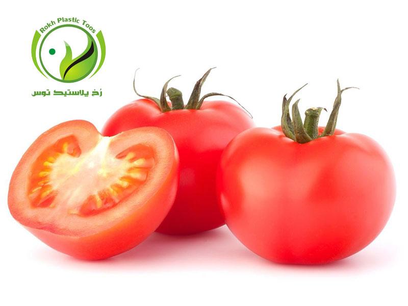 گوجه فرنگی گلخانه ای رخ پلاستیک توس