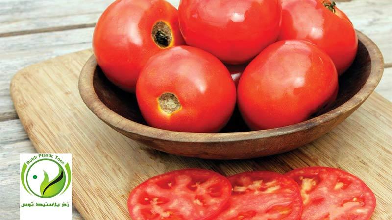 گوجه فرنگی گلخانه ای, آفات, بیماری ها, رخ پلاستیک توس