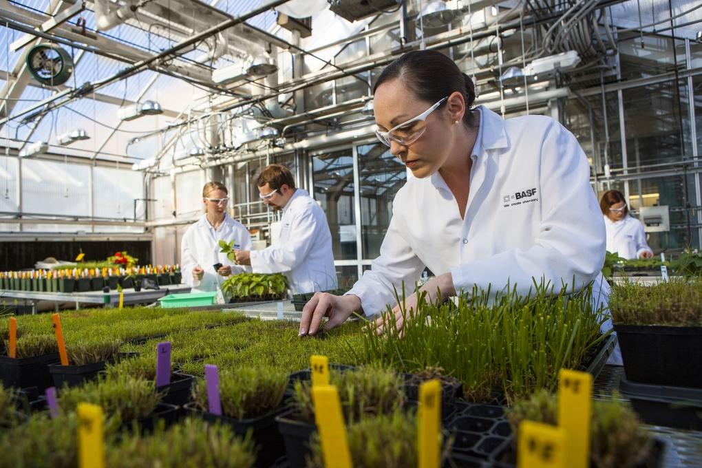 گلخانه تحقیقاتی, Research Greenhouse
