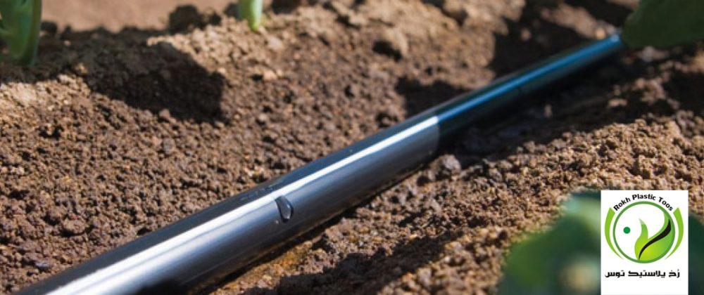 کاربرد آبیاری قطره ای در زراعت صیفی جات