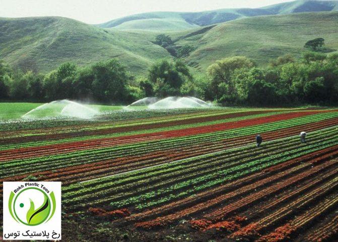 تصویری از آبیاری مزارع